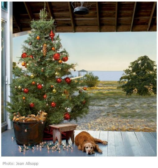 Новогодняя елка вид на пляж